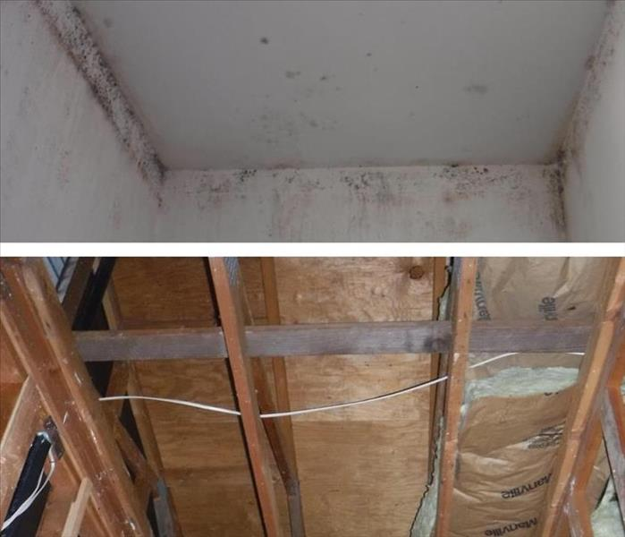 Before and After photo showing mold on a ceiling of a bathroom in the upper photo and the lower photos shows the drywall gone